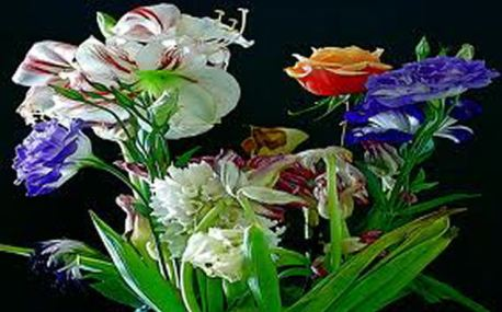 love friendship flowers (1)