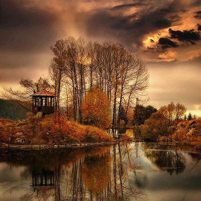 fall island (1)