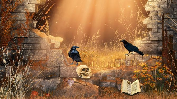 book-fantasy-flowers-Gothic-grass-leaves-light-macabre-mystical-ravens-skulls