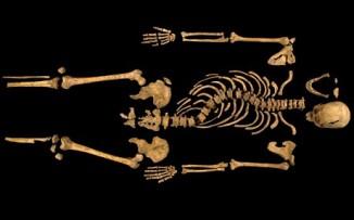 King Richard III Skeleton