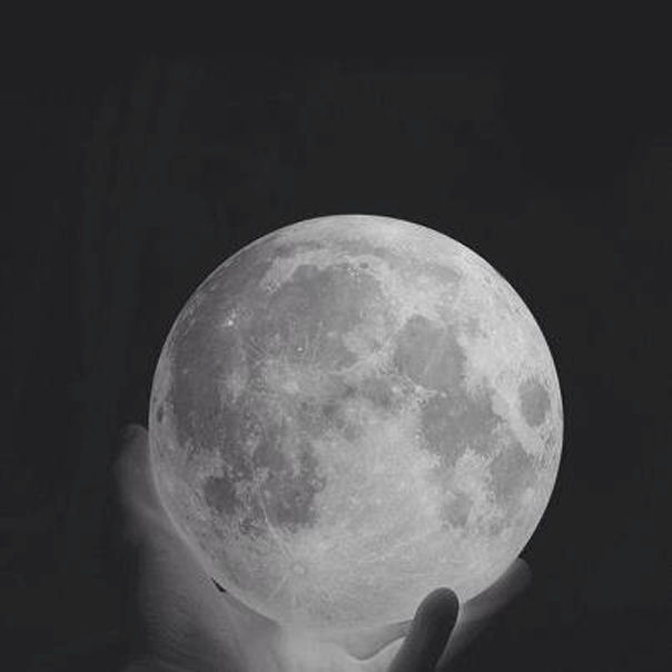 transmettre tenant la lune de Anonymous Art of the Revolution