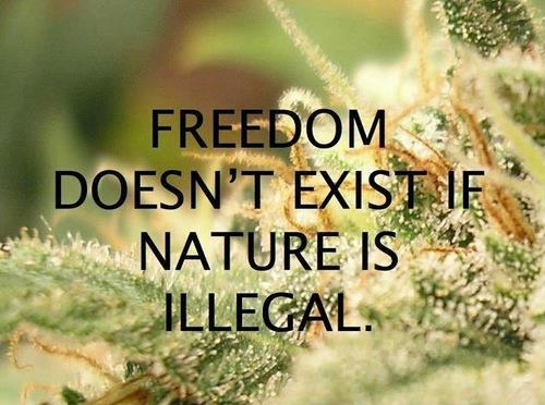freedom nature is illegal