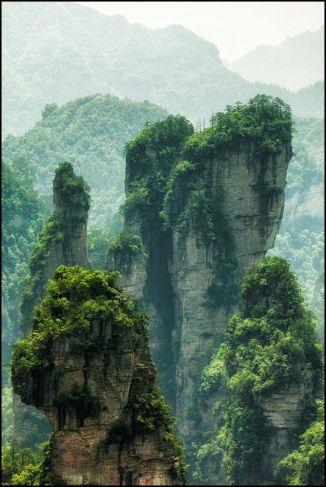 garden peaks of green