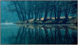a magical forest landscape reflected in water sprinkled in faery dust 684x394