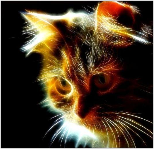 4p if the goddes were a kittie irridescent kitten