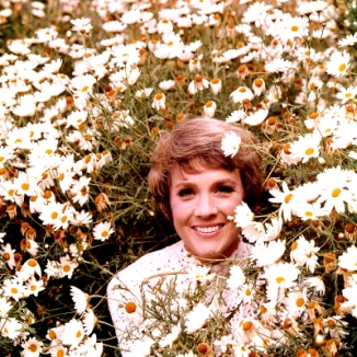 Julie Andrews in a field of daisies.