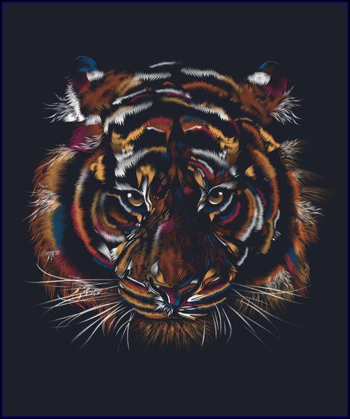 Tiger Face  Artist Alex Fitch