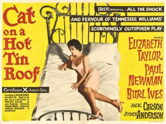 cat_on_a_hot_tin_roof poster