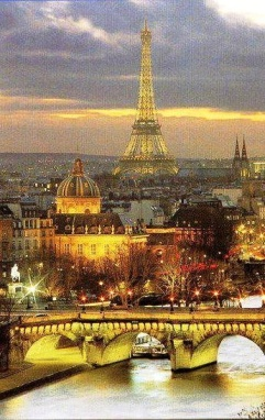 paris view from notre dame at night eiffel tower