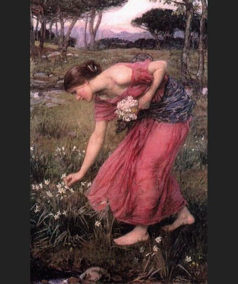 Waterhouse Narcissus