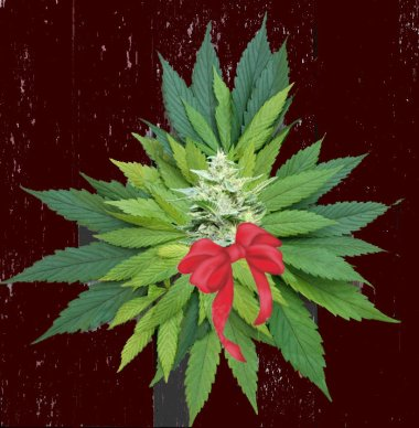 cannabis wreath