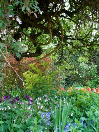 Virginia Woolf's Monk's House Garden