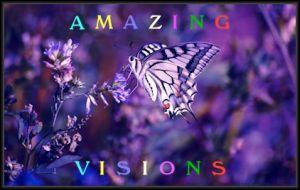amazing visions