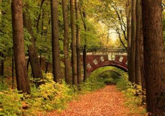 autumn_bridge_in_russia