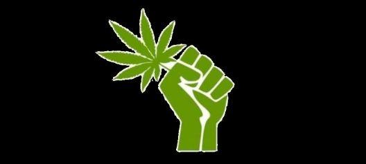 marijuana-fist 1