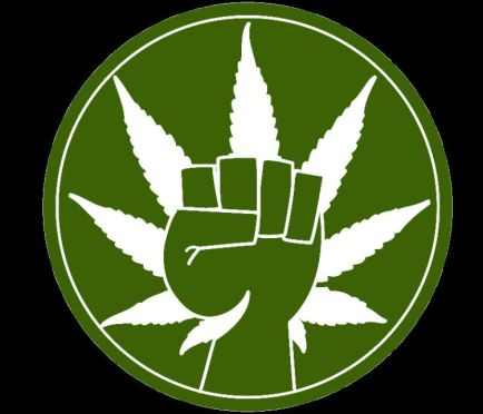 marijuana political-pot-power 1