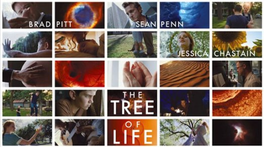 tte Tree-of-Life-movie 20 images in photo array of one