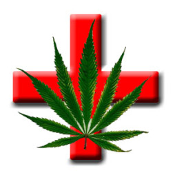 medicalmarijuana-red-cross-marijuana-leaf1