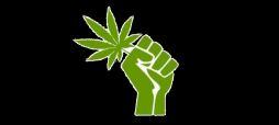 marijuana-fist-11