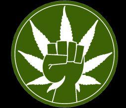 marijuana-political-pot-power-1