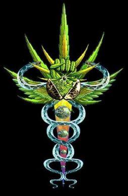 marijuana_leaf-reiki_002