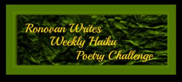 ronovan-writes-haiku-challenge-shadow