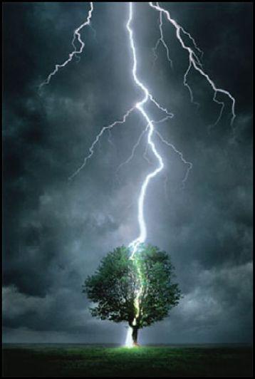 lightning strikes tree