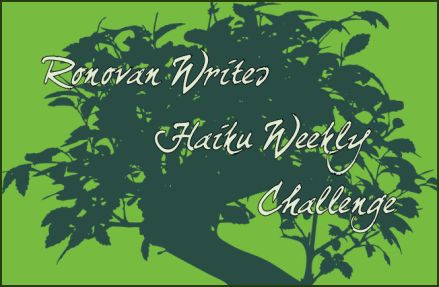 ronovan writes haiku weekly challenge mine