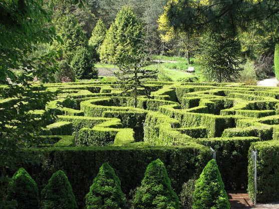 labyrinth mystery paths