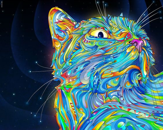 psychedelic cat for SHINING