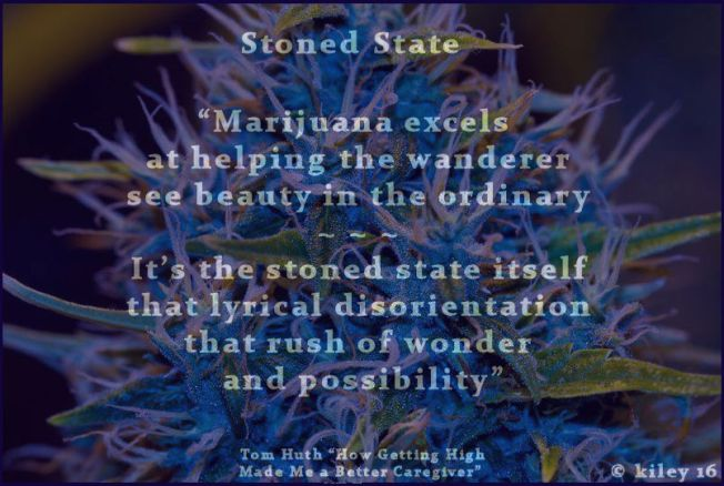 stoned state (c) kiley 16 POSTER #2