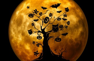 5-halloween-orange-moon-silouetted-tree-images-on-branches-perfect
